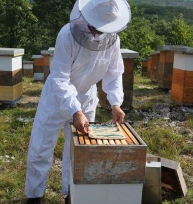 Храна за пчели – паста